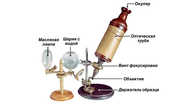Кто изобрёл первый микроскоп
