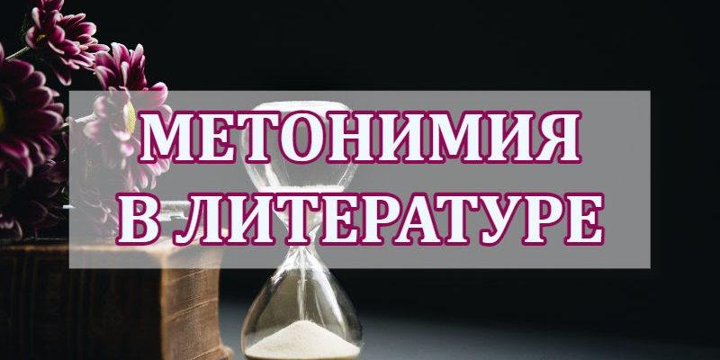 Метонимия в литературе