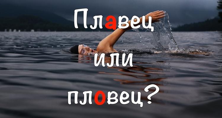 Пловец или плавец