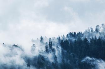 Что такое туман