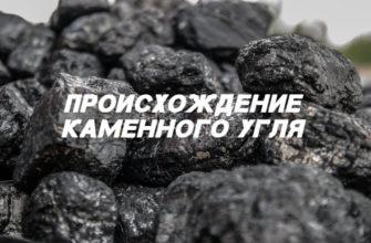 Происхождение каменного угля